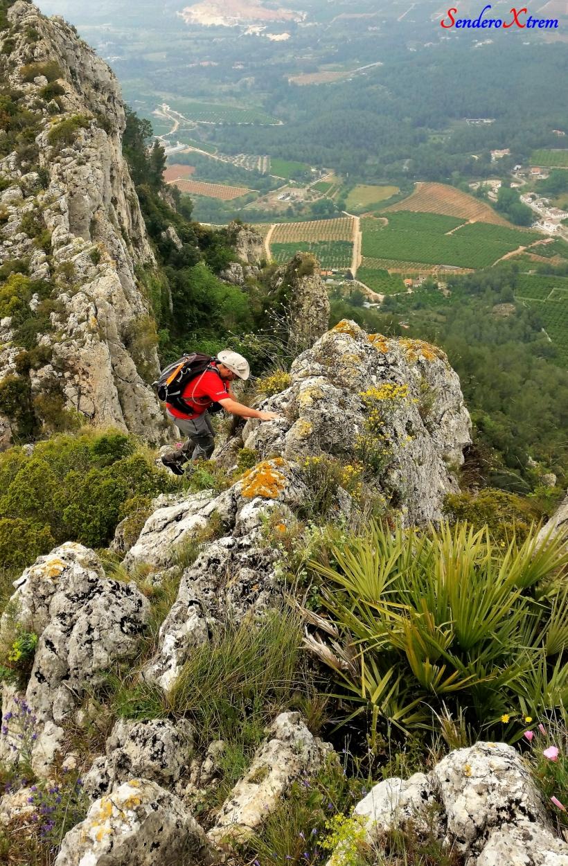 Serra del Buixcarrò