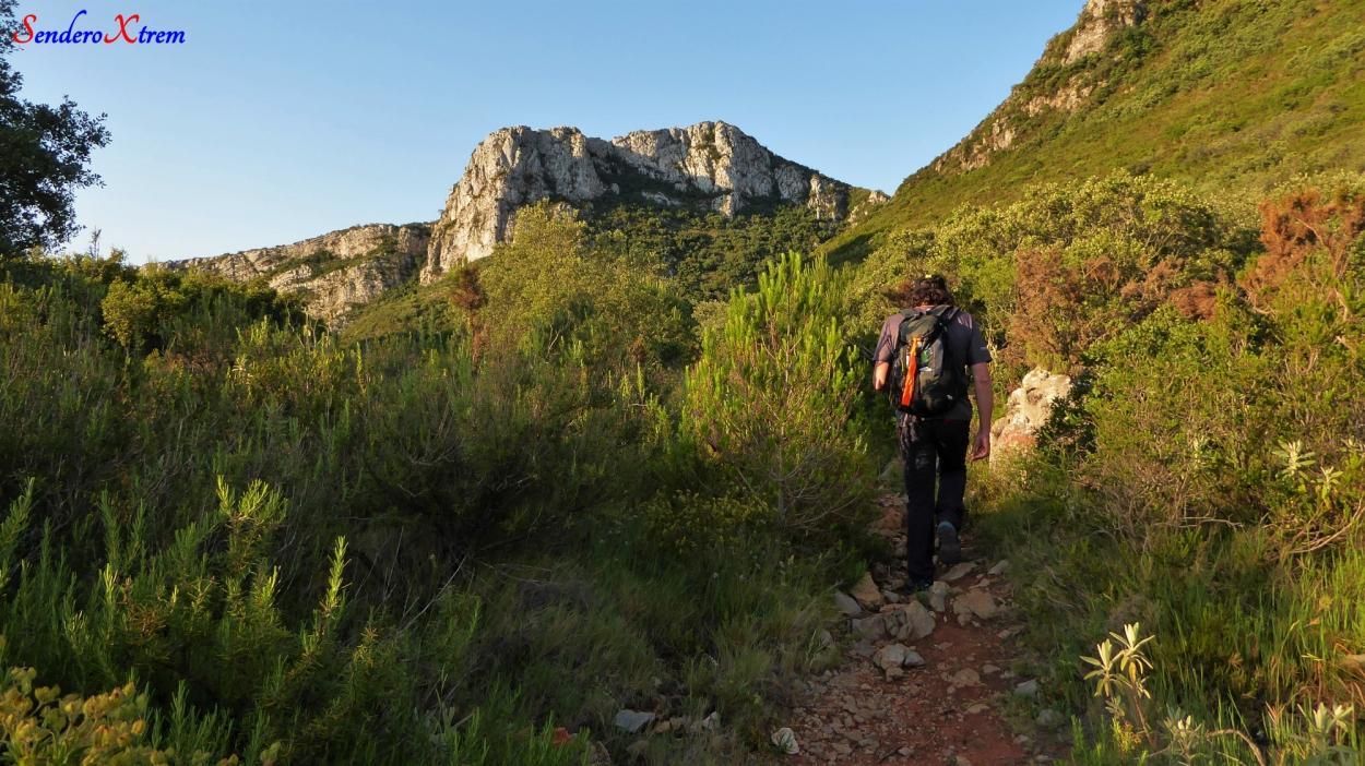 Hacia el Barranc de la Selleta